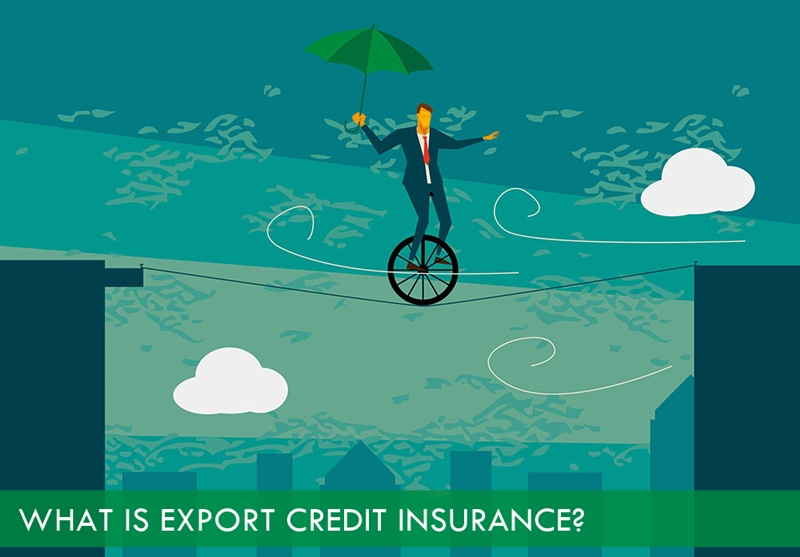 What is export credit insurance