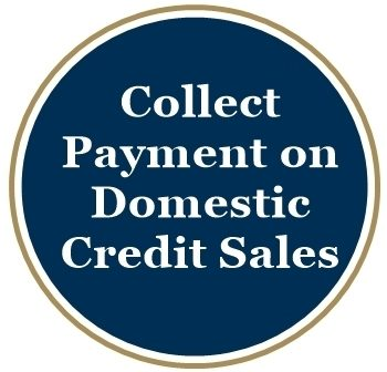 Collect Payment on Domestic Credit Sale